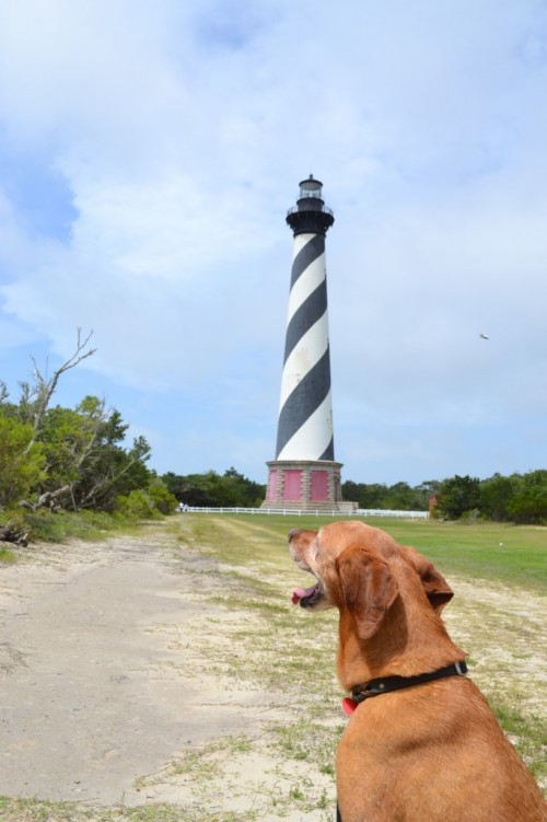 Checking out the lighthouse