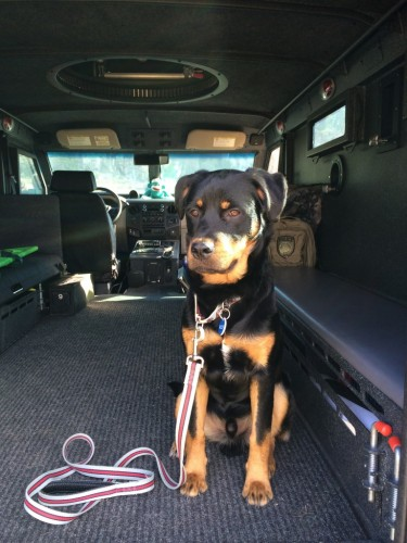 Helping Dad in the SWAT truck.  All grown up.